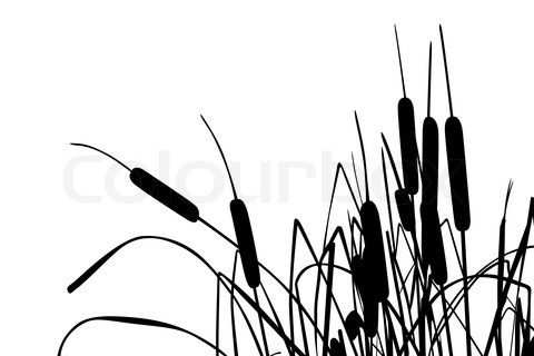 Cattails silhouette clipart graphic royalty free cattail art | Creating a beautiful home | Grass drawing, Silhouette ... graphic royalty free