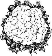 Cauliflower clipart black and white picture royalty free download Cauliflower clipart black and white 4 » Clipart Portal picture royalty free download
