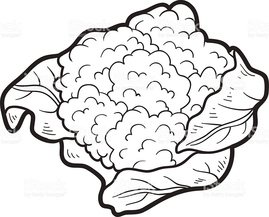Cauliflower clipart black and white image library library Cauliflower Clipart Black And White 1 | Clipart Station intended for ... image library library