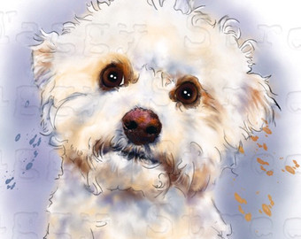 Free Cavachon Puppy Cliparts, Download Free Clip Art, Free Clip Art ... library