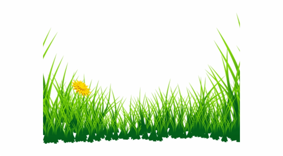 Cb background clipart black and white download Daffodils Clipart Grass - Nature Cb Background Png, Transparent Png ... black and white download