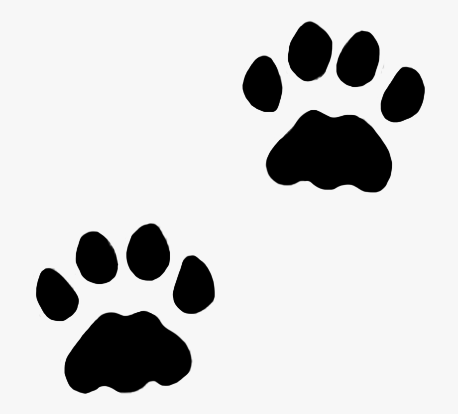 Cat in snow clipart black and white clipart library library Dog Paws, Cat Paws In Snow, C - Cat Prints Clipart #42430 - Free ... clipart library library