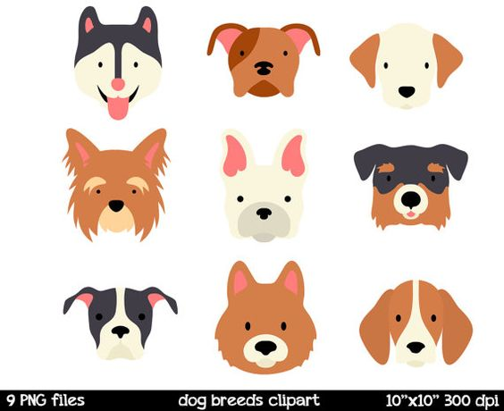 C-dog clipart clip art library 74+ Dog Face Clipart | ClipartLook clip art library