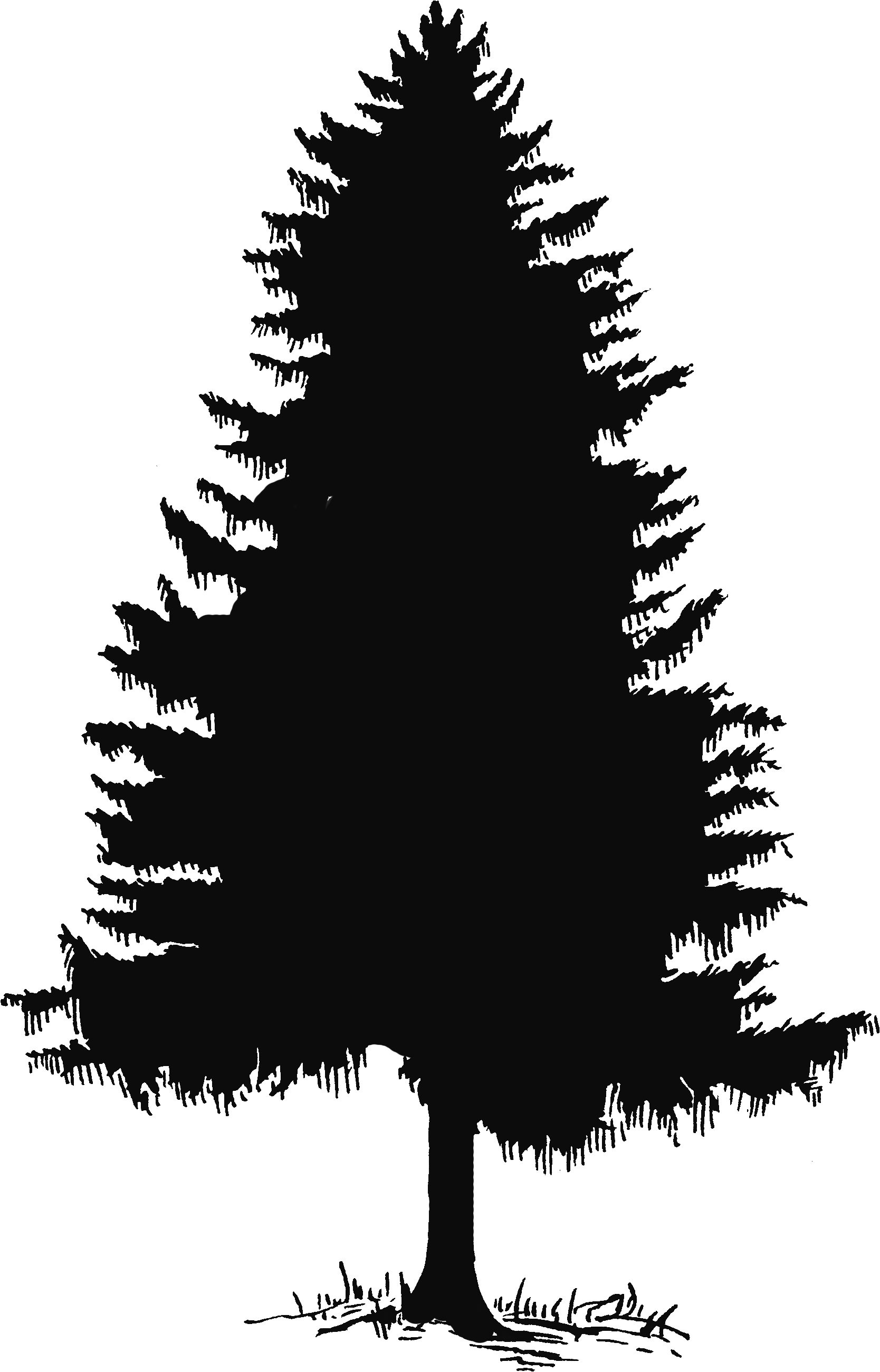 Christmas tree clipart silhouette image royalty free download Pine tree tree silhouette and clip art on 2 | christmas | Pinterest ... image royalty free download