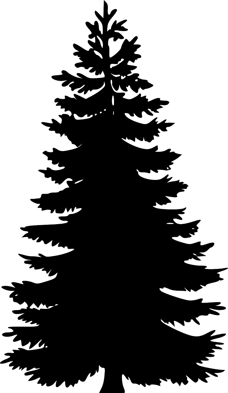 Cedar tree clipart black and white download How to draw a Christmas tree: free printable Christmas tree stencils ... download