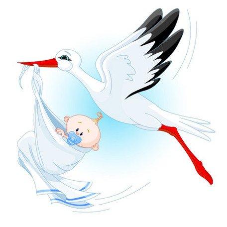 Cegonha clipart clipart black and white Clipart e gráficos vetoriais de Cegonha carregando um bebê gratuitos ... clipart black and white