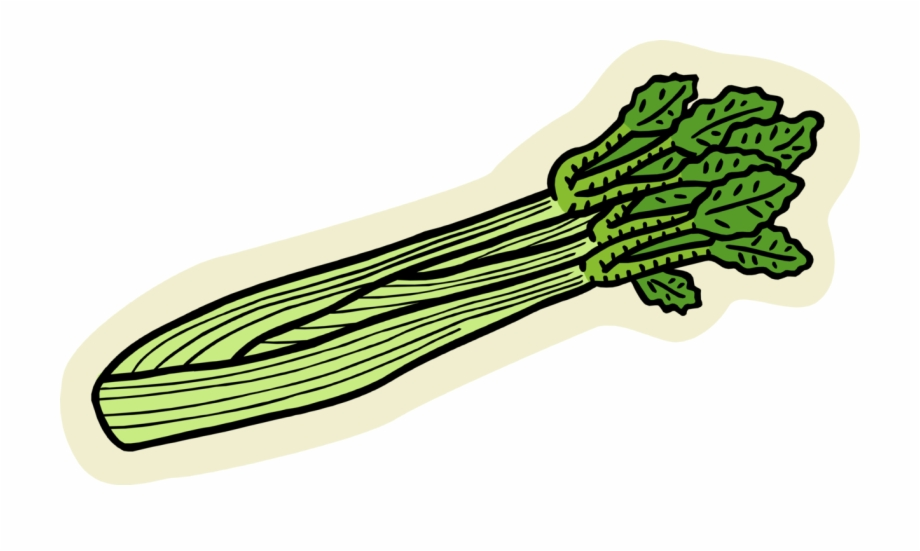 Cellery clipart clip Vector Illustration Of Edible Vegetable Celery Stalk - Clipart ... clip