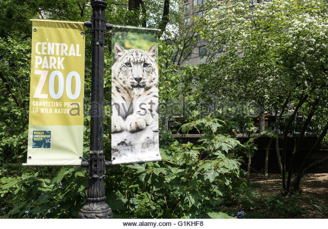 Central park zoo wildlife logo clipart clip art royalty free Informative Sign At Zoo Stock Photos & Informative Sign At Zoo ... clip art royalty free