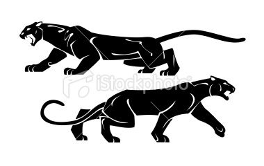 Century panther vector clipart graphic free stock Two black panthers. Drawing on a white background. | Paint | Black ... graphic free stock