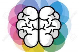 Cerveau clipart clip art download Clipart cerveau 3 » Clipart Portal clip art download