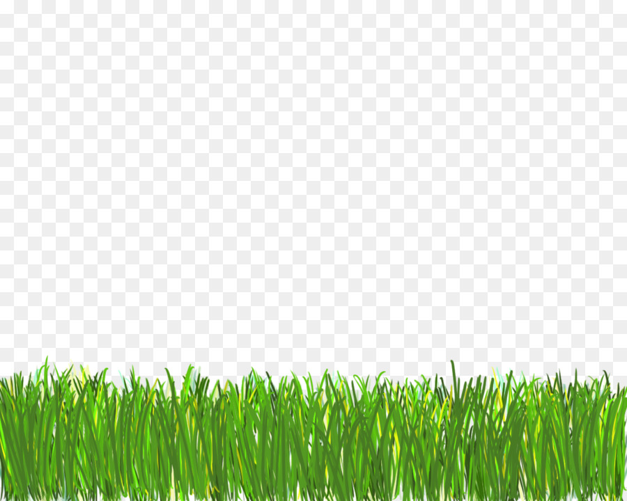 Cesped clipart jpg freeuse download Green Grass Background clipart - Green, Grass, Plant, transparent ... jpg freeuse download
