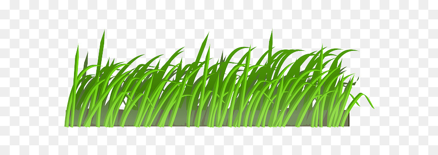 Cesped clipart clip art royalty free stock Green Grass Background clipart - Grass, Green, Plant, transparent ... clip art royalty free stock