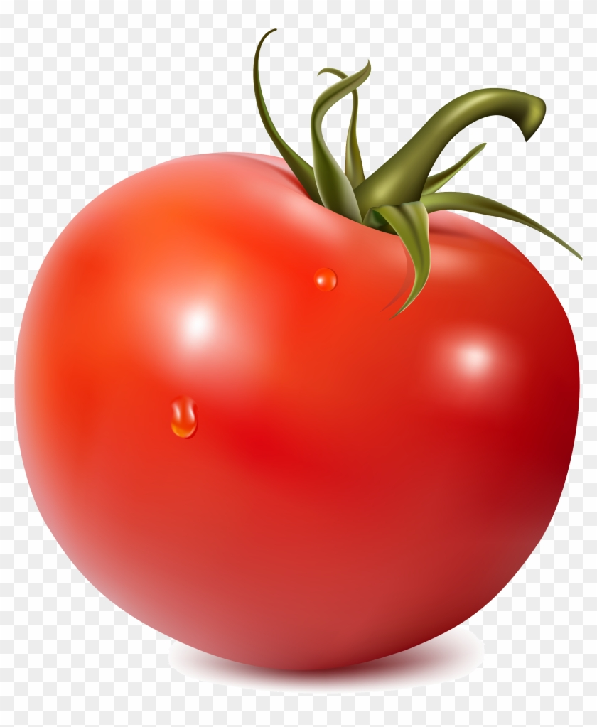 Chalk tomato clipart picture free library Tomato Png - Tomato Clipart, Transparent Png - 2683x3000(#534886 ... picture free library