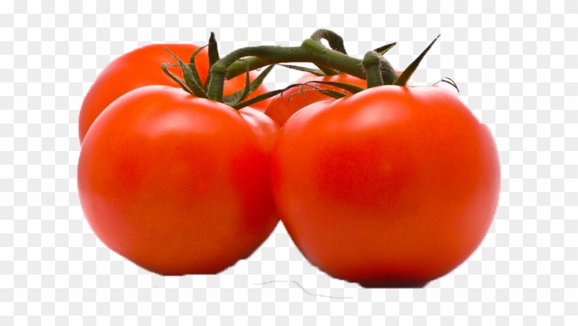 Chalk tomato clipart picture download Tomato Png Image - Three Tomatoes Clipart, Transparent Png - 778x478 ... picture download