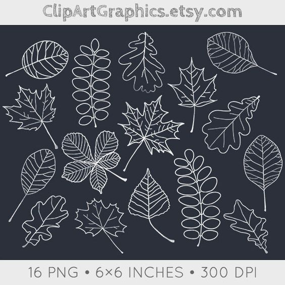 Chalkboard art clipart autumn graphic black and white stock Digital Chalkboard Leaves Clip Art Fall Chalk by ClipArtGraphics ... graphic black and white stock