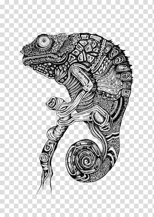 Chameleon black and white invisible background clipart clipart free library Chameleons Lizard Drawing Tattoo, Chameleon pattern transparent ... clipart free library