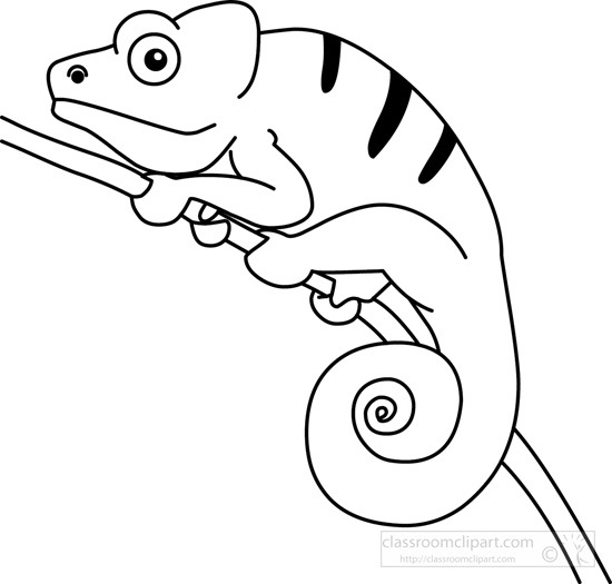 Chameleon clipart chamelon, Chameleon chamelon Transparent FREE for ... banner transparent stock