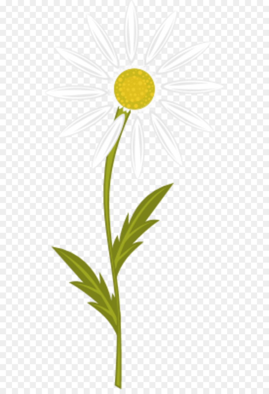 Chamomile clipart svg free library Tea, Flower, Yellow, transparent png image & clipart free download svg free library