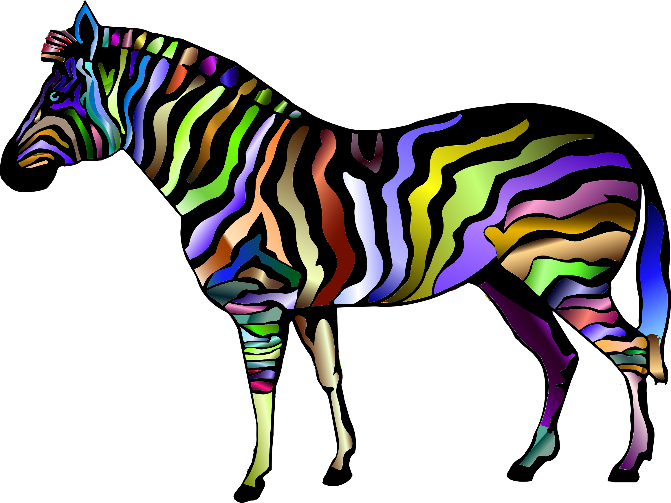 Zebra star clipart picture library library Zebra Print Clipart at GetDrawings.com   Free for personal use Zebra ... picture library library