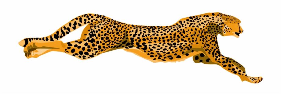 Cheetahs clipart png library Cheetah Png - Cheetah Clipart Free PNG Images & Clipart Download ... png library