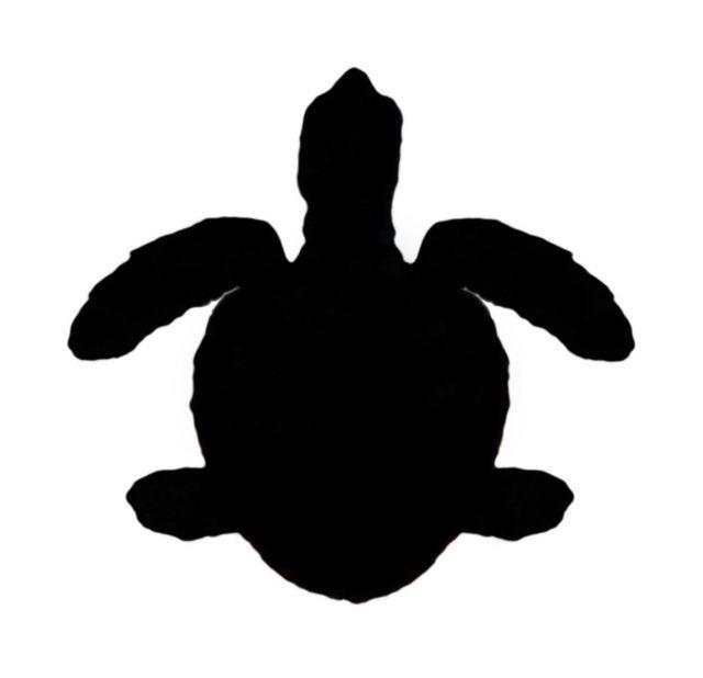 Chelonia clipart jpg black and white stock Silhouette of Green Sea Turtle (Chelonia mydas) | Silouettes ... jpg black and white stock