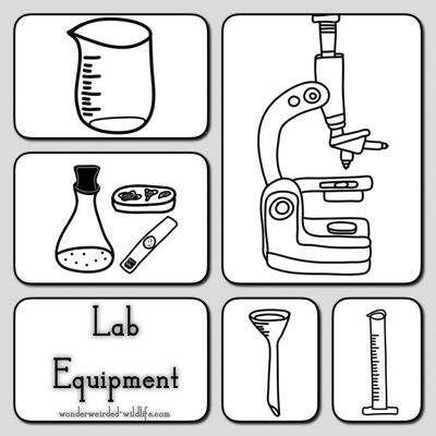 Cliparts of science equipment svg transparent library Lab Equipment Clipart , Pictures of Botany Tools, Different Types of ... svg transparent library
