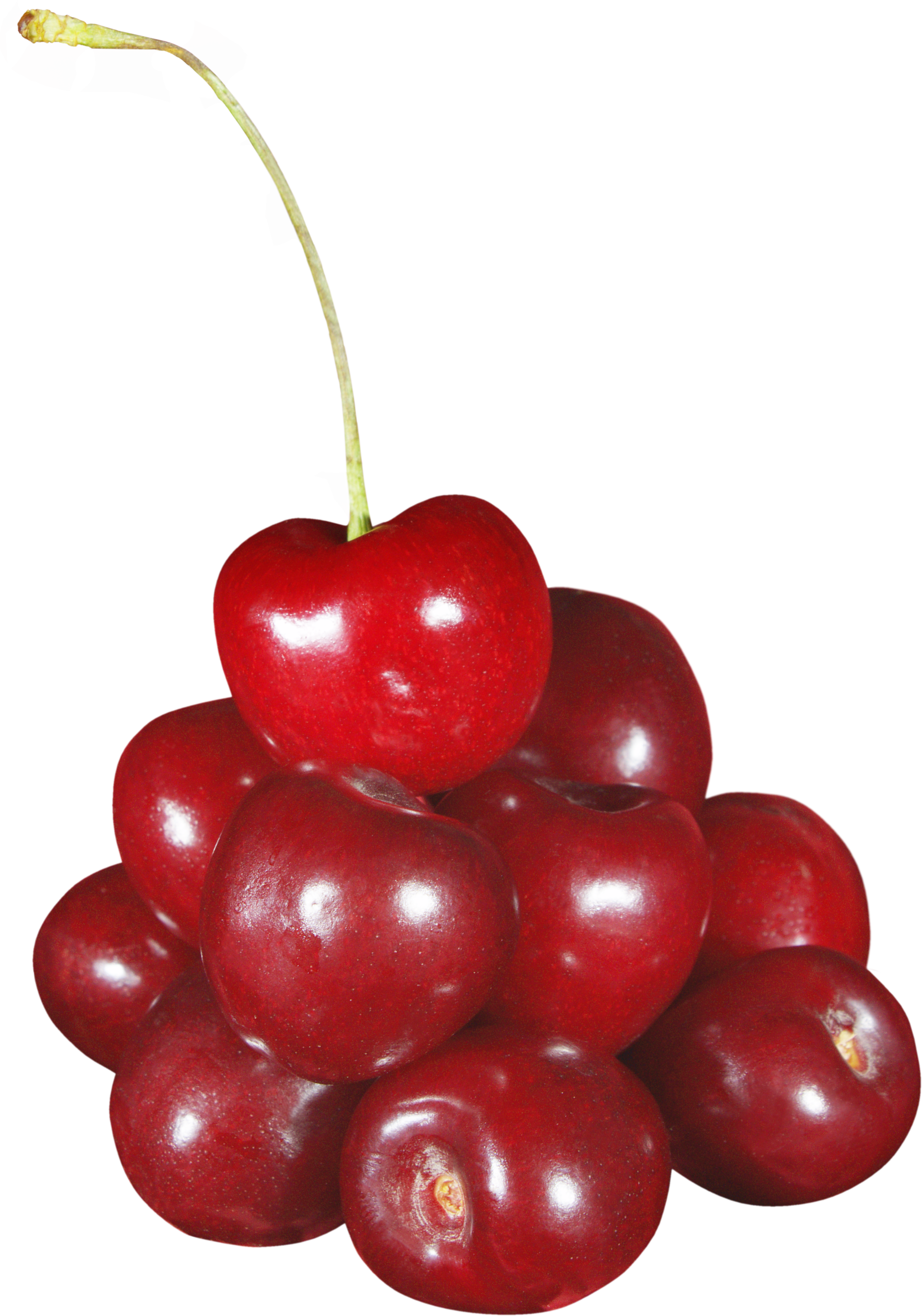 Cherries and apple clipart black and white royalty free Cherry Forty-two   Isolated Stock Photo by noBACKS.com royalty free