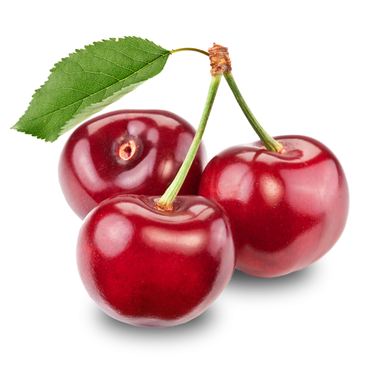 Cherries and apple clipart black and white vector stock As raw fruit, sweet cherries provide little nutrient content per 100 ... vector stock