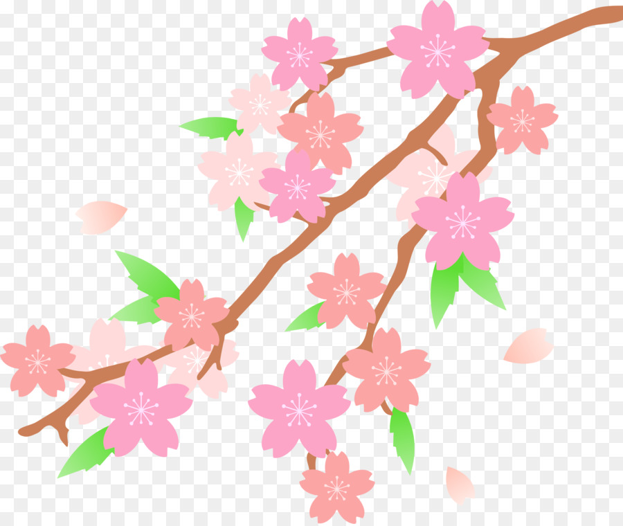 Cherry blossom clipart images picture royalty free download Cherry Blossom Cartoon clipart - Flower, transparent clip art picture royalty free download