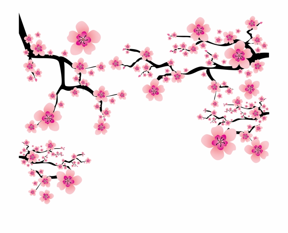 Cherry blossom clipart images vector library library Cherry Blossom Plum Blossom Clip Art - Transparent Sakura Flower Png ... vector library library