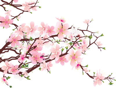 Cherry blossom clipart images vector royalty free library Cherry Blossom Clip Art Free - ClipArt Best   Paintings in 2019 ... vector royalty free library