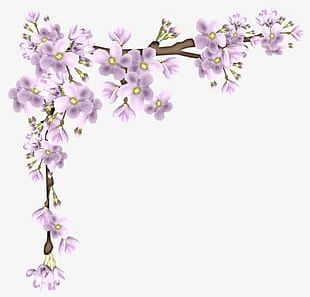 Cherry border clipart free picture free Cherry Border PNG Images, Cherry Border Clipart Free Download picture free