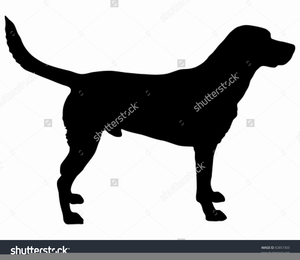 Chesapeake bay retriever clipart jpg free download Chesapeake Bay Retriever Clipart | Free Images at Clker.com - vector ... jpg free download