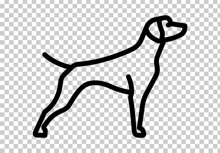 Chesapeake bay retriever clipart clipart freeuse library German Shorthaired Pointer Chesapeake Bay Retriever Dachshund Border ... clipart freeuse library