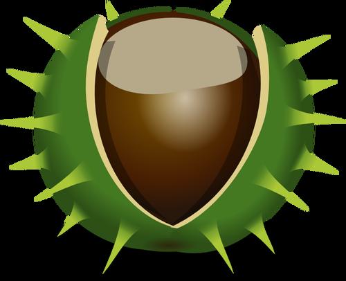 Chestnut clipart jpg Chestnut in shell vector image   Public domain vectors jpg