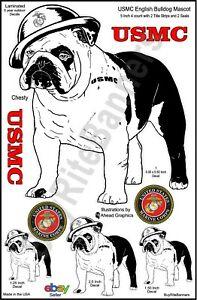 Chesty bulldog clipart clip free stock Details about USMC-English Bulldog Mascot Decal Bundle. Devil Dog Quality. clip free stock