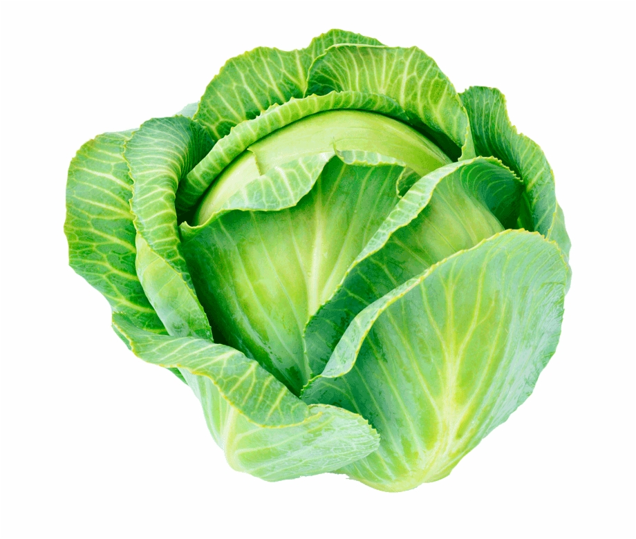 Chicken and collard greens clipart transparent graphic free Organic Cabbage - Collard Greens Free PNG Images & Clipart Download ... graphic free