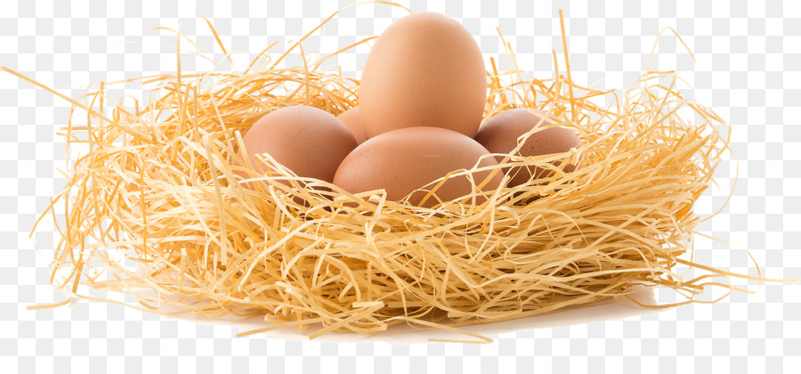 Chicken eggs in straw clipart black and white banner royalty free stock Straw Background png download - 1920*859 - Free Transparent Chicken ... banner royalty free stock
