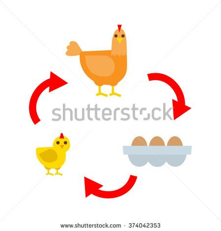 Hen eggs stock vector. Chicken life cycle clipart