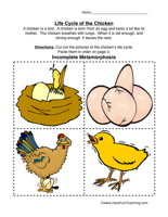Chicken life cycle clipart clipart library download Chicken Life Cycle Worksheet | Have Fun Teaching clipart library download