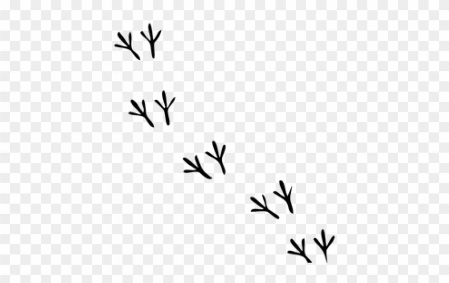 Chicken tracks clipart