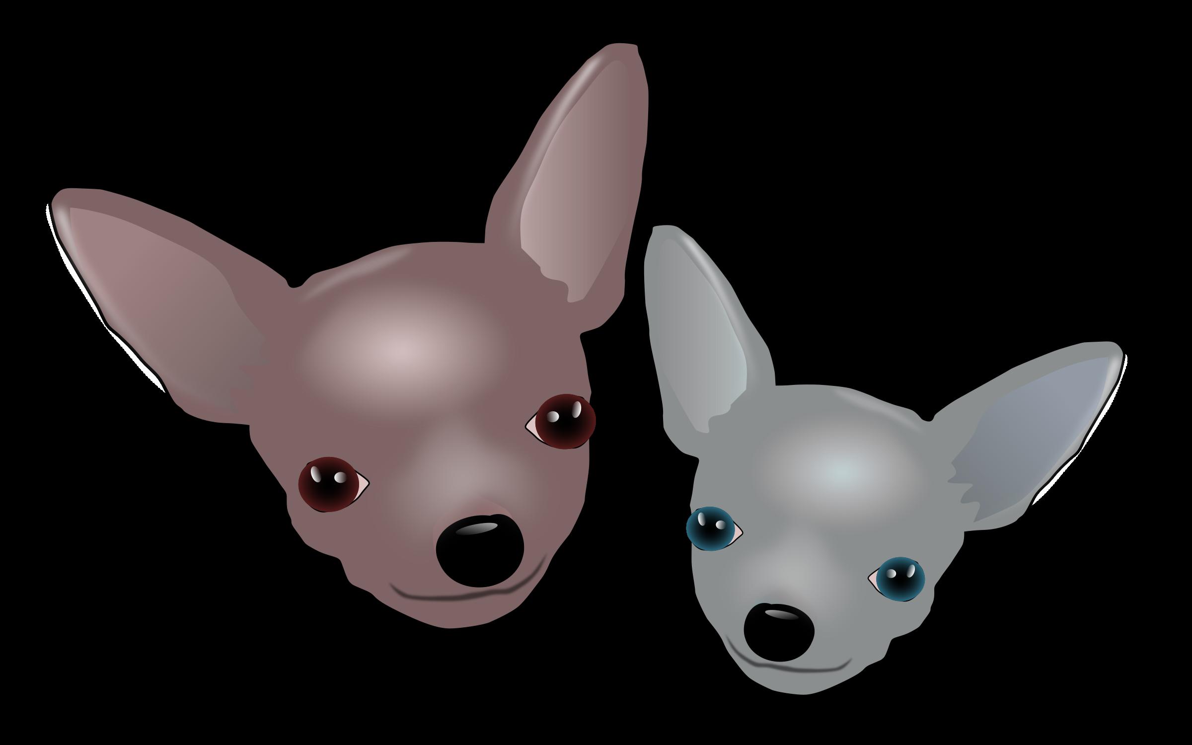 Chihuahua dog clipart clipart Clipart - Two Chihuahuas clipart