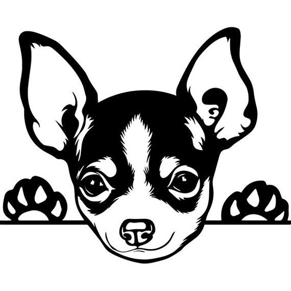 Chihuahua tongue out clipart black and white vector library stock Pin by Krista F on vinyl ventures | Dogs, Dog silhouette, Cricut vector library stock