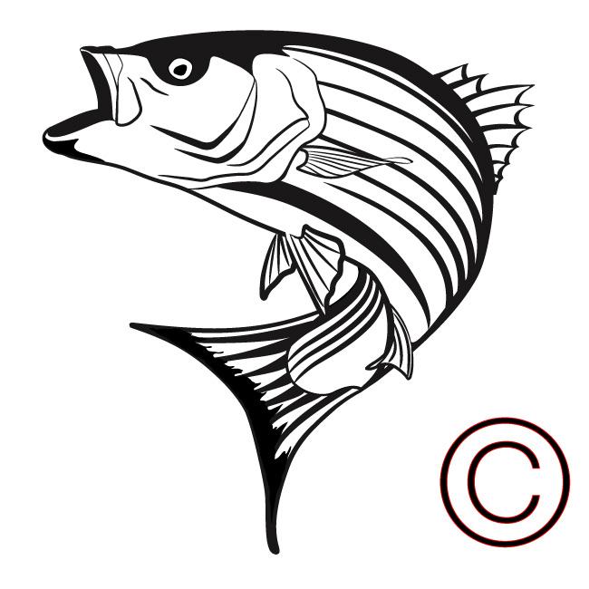 Striper clipart clip black and white download Striped bass clipart - Clip Art Library clip black and white download