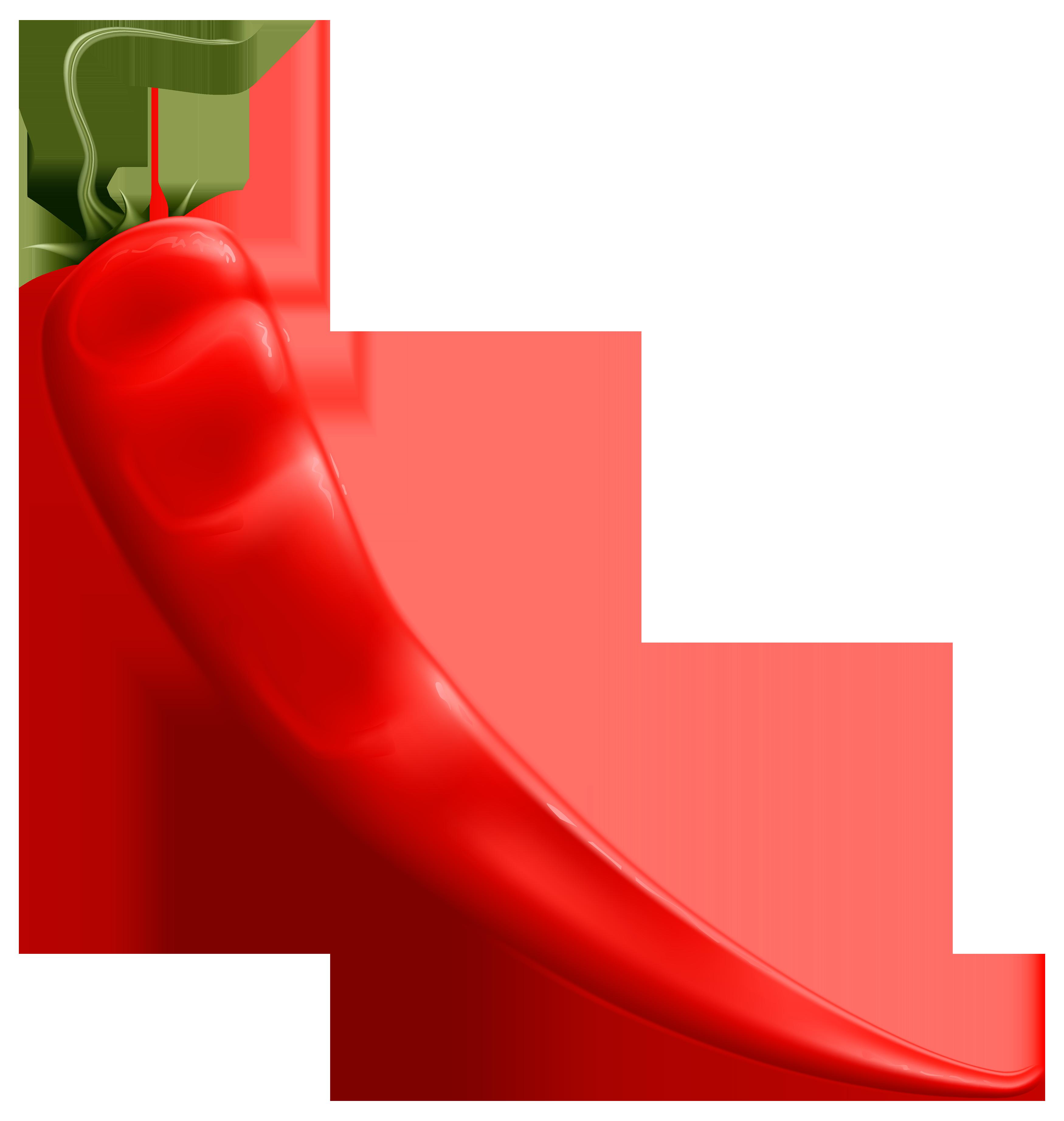 Chili pepper free clipart