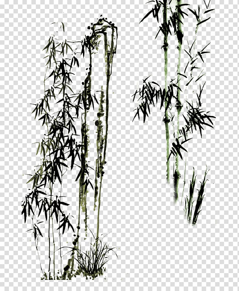 Chinese bamboo tree clipart clip royalty free Bamboo trees illustration, Paper Drawing Bamboo Chinese painting ... clip royalty free