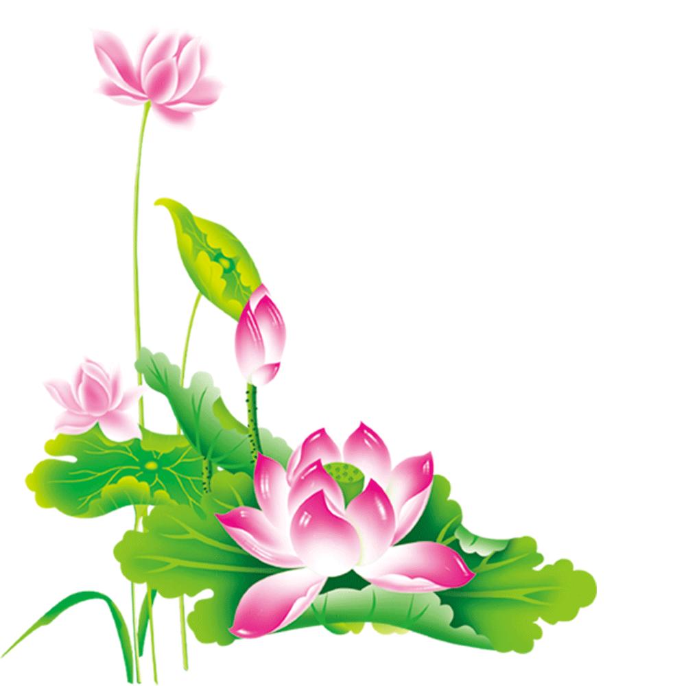 Chinese flower clipart clip art stock Nelumbo nucifera Chinese New Year Pink - Lotus Lotus 1000*1000 ... clip art stock
