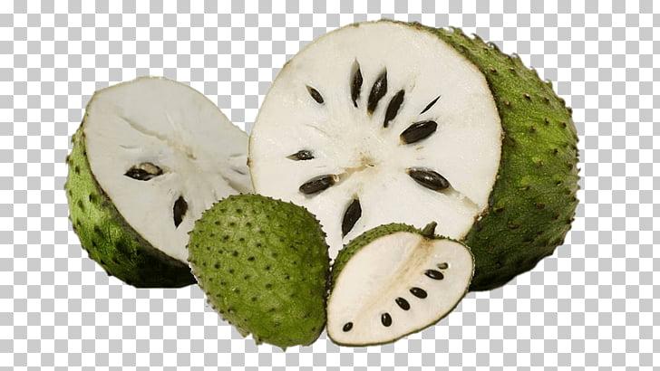 Chirimoya clipart graphic library stock Cocina colombiana, guanábana, fruta, azúcar, manzana, chirimoya ... graphic library stock