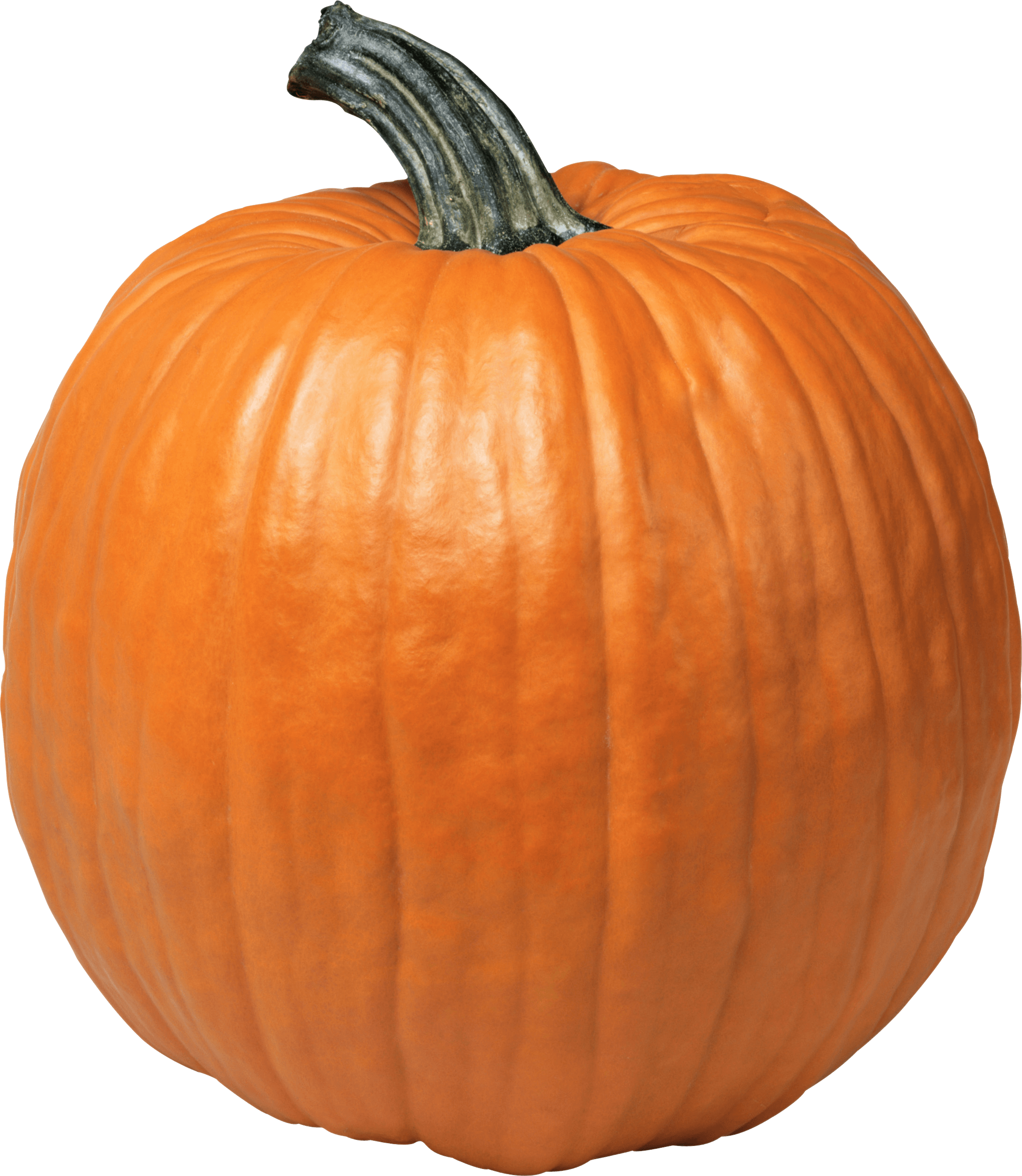 Pumpkin png clipart for photoshop svg freeuse Pumpkins transparent PNG images - StickPNG svg freeuse