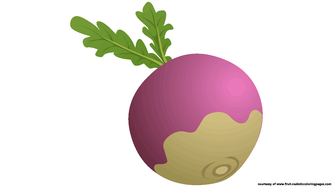 Chopped apple clipart picture library library 8 Downloadable Astonishing Beetroot Clipart - Fruit Names A-Z With ... picture library library